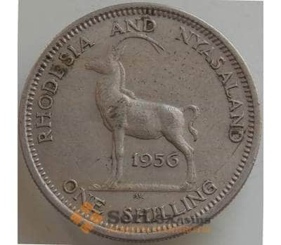 Родезия и Ньясаленд 1 шиллинг 1956 КМ5 XF арт. 14558